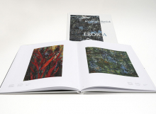 1_Slavicek kniha
