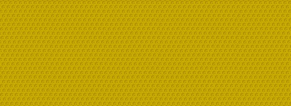 Slide_Tri-kralove2020